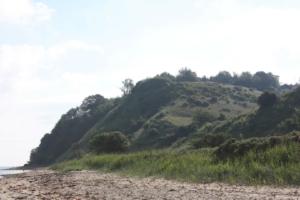 Røjle Klint rejser sig 40 meter over havet.